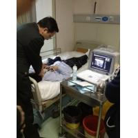 "Wholesale 10 "" SVGA monitor Portable Ultrasound Scanner / 64 - Frame Cinema Loop from china suppliers"
