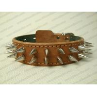Quality Spiked leather dog collar with extra punks for sale