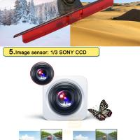Quality Brake Light Car Rearview Camera System With 1/3 SONY CCD Chips / 170 Degree for sale