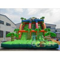 Wholesale Inflatable Pool Water Slides For Adults / Fun Garden Water Slides CE from china suppliers