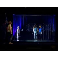 Wholesale 3D Projection System 3D Holographic Display Hologram Stage Show Pepper Ghost Technology from china suppliers