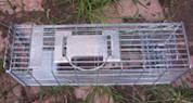 Buy cheap Multi-catch Rat Trap Cage from wholesalers