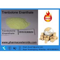 Wholesale Raw Steroid Parabolan Trenbolone Powder Enanthate CAS 10161-33-8 from china suppliers