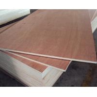Wholesale Red Hardwood Plywood/Commercial Plywood for Sale from china suppliers