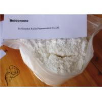 Wholesale Boldenone Steroid Raw Powder / Boldenone Base White Crystalline Powder CAS 846-48-0 from china suppliers