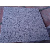 Buy cheap China Original Light Grey GranitG603 Granite tiles & stairs, wall claddings Wall tops & windowsills, slabs & countertops from wholesalers