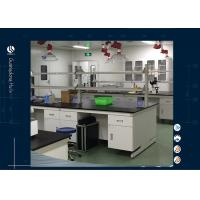 Wholesale Solvent Resistant Two Layer Science Lab Furniture , Metal Workbench With Reagent Shlef from china suppliers
