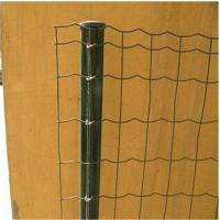 Wholesale Galvanized iron and pvc coated Euro fence panel from china suppliers