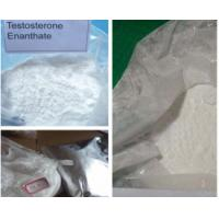 Wholesale Raw Testosterone Powder Bulking Cycle from china suppliers