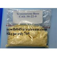 High Purity Raw Steroid Powders Testosterone / Testosterone Base for Muscle Growth