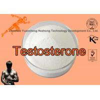 Wholesale 99% Raw Testosterone Powder For Muscle Growth / Raw Hormone Powders Cas1045 - 69 - 8 from china suppliers