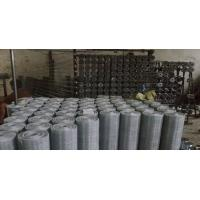 Wholesale ISO9001 Certification 20 Galvanised Wire Mesh Electro-galvanized from china suppliers