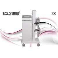 Wholesale Painless Beauty Salon Cryolipolysis Slimming Machine , Multifunction Beauty Equipment from china suppliers