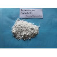Wholesale Testosterone Enanthate Oil Based Injectable Bodybuilding Anabolic Steroids 315-37-7 from china suppliers