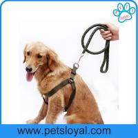 Wholesale Hot Selling Cheap Pet Dog Product Nylon Pet Dog Harness Leash China Factory from china suppliers