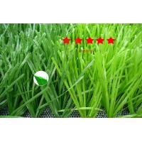 Buy cheap Professional Football Artificial Turf/50mm thickened double spine grass(LTGSDS503) from wholesalers