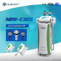 Wholesale FDA CE aprobó la clínica de belleza utilizado 5 manijas cryolipolysis máquina adelgazante con cavitación Rf maneja from china suppliers