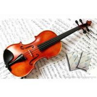 Wholesale NEW Humigic Super Acoustic Violin Case Humidifier Powder Apperance from china suppliers