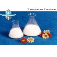 Wholesale 98% Raw Steroid Hormone Testosterone Enanthate CAS 315-37-7 for Muscle Building from china suppliers
