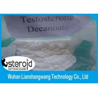 Wholesale CAS 5721-91-5 Injectable Anabolic Steroids Testosterone Decanoate White Crystalline Powder from china suppliers