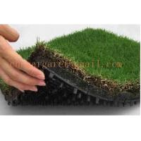 Wholesale Drainage board for roof garden from china suppliers
