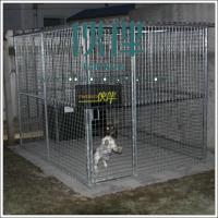Wholesale Welded Wire Mesh for Dog kennels,dog runs,dog cages,China factory direct export from china suppliers