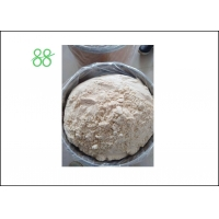 Wholesale White Powder Pyridaben 20%WP Tick Insecticide from china suppliers