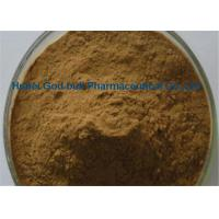 Wholesale Natural Herbal Extract Powder Brown Fine Panax Notoginseng Root Extract from china suppliers
