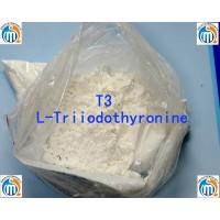 Wholesale Oral Injectable Anabolic Steroid CAS 55-06-1 L-Triiodothyronine T3 from china suppliers