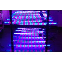 Wholesale 33W LED Waterproof Grow Light from china suppliers