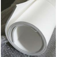 Quality 70shore A Colored Plastic Sheet Expand Teflon Sheet For Pharmaceutical , Chemical for sale