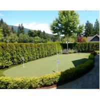 Wholesale synthetic grass for backyard putting green from china suppliers
