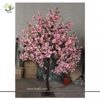 Wholesale UVG CHR074 Flowering Cherry Trees 8ft high from china suppliers