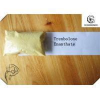 Wholesale CAS 472-61-546 Trenbolone Steroid / Trenbolone Enanthate 97.0~103.0% Muscle Bodybuilding Steroid Hormone from china suppliers