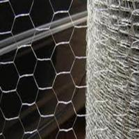 Wholesale galvnised hexagonal net from china suppliers