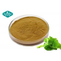 Wholesale Cosmetic Grade Centella Asiatica ( Gotu Kola ) High Purity Extract For Skin Care from china suppliers