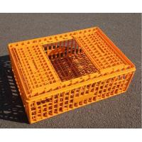 Wholesale Platic bird transport crate from china suppliers