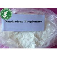 Buy cheap Muscle Growth Steroids Powder Nandrolone Propionate for Bodybuilding from wholesalers