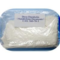 DECA Testosterone Anabolic Steroid CAS 360-70-3 Nandrolone Decanoate Steroid