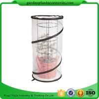 Wholesale Metal Tomato Cages / Tomato Plant Stakes With Pop Up Grow Mesh Bag from china suppliers