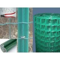 Wholesale Plastic Coated Garden Wire Mesh , Electro Aviary Wire Mesh 48in. x 50ft from china suppliers