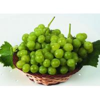 Wholesale Paclobutrazol 95% TC/use for Grape/fruit from china suppliers