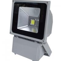 Wholesale Cool White COB High Power Led Outdoor Flood Light 20 Watt , AC 110v / 220v from china suppliers