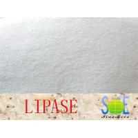 Wholesale Lipase Enzyme Supplement 90000u/g Enzymes In Food Industry Szym-LIP90BA from china suppliers