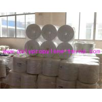 Wholesale Split Film 7500D Tomato Tying Twine Raw White For Agriculture Packing from china suppliers