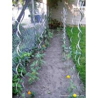 Wholesale Spiral Plant Stakes,Tomato Stakes,Climbing Plant Support Mesh from china suppliers