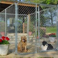 Wholesale custom dog kennel from china suppliers