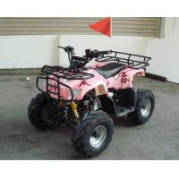 Wholesale Single Cylinder 110cc Atv Quad Bike SHINERAY 4 Stroke With Rear Rack from china suppliers
