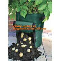 Wholesale Horticulture, NURSERY, PLANTER, SEED, PLASTIC GROW BAGS, HYDROPONICS, FLOWERPOTS, BLACK from china suppliers