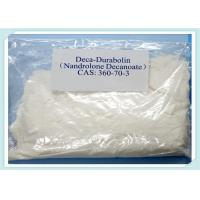 Wholesale Muscle Gain Injectable Nandrolone Steroid Liqiud CAS 360-70-3 , Nandrolone Decanoate from china suppliers